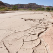 Cracks in the River Bed — Stock Photo