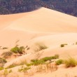 Coral Pink Sand Dunes — Stock Photo #5166927