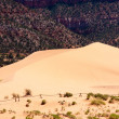 Coral Pink Sand Dunes — Stock Photo #5167375
