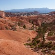 Stock Photo: Rolling Landscape of Bryce Canyon