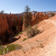 Fairyland Loop Trail in Bryce Canyon — Stock Photo