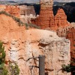 AguCanyon at Bryce Canyon — Stock Photo #5169826