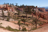 Bryce Canyon Landscape — Stock Photo