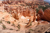 Bryce Canyon National Park — 图库照片
