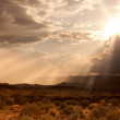Sunset over the Arizona Desert — Stock Photo #5173823
