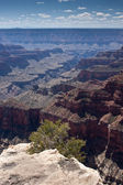 Bright Angel Canyon from the Grand Canyon North Rim — Stock Photo