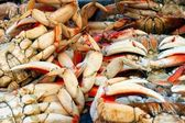 Fresh crab — Stock Photo