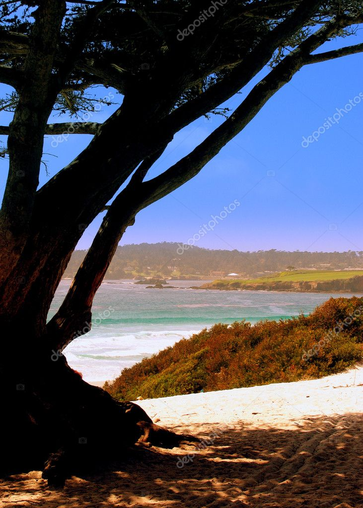 Carmel by the sea — Stock Photo #4982785