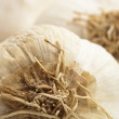 Garlic bulbs - Foto Stock