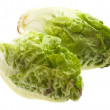 Fresh lettuce — Stock Photo #4985205