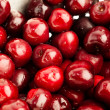 Cherries — Stock Photo #4985423