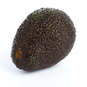 Avocado isolated — Stock Photo