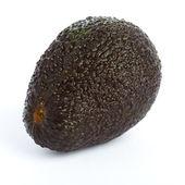 Avocado isolated — Stock Photo