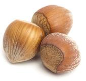 Hazelnuts — Stok fotoğraf
