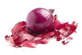 Peeled onion — Stock Photo