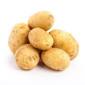 Potatoes isolated — Стоковое фото