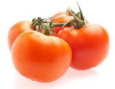 Tomat cherry — Stockfoto