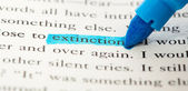 Extinction word — Stock Photo