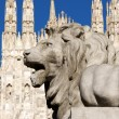 Stone lion in Piazza Duomo, Milan — Stock Photo