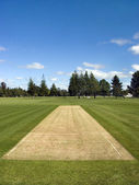 Cricket pitch in the park — Stock Photo