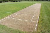 Cricket pitch sport background — Stock Photo