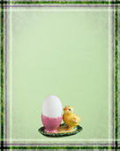Easter card with chicken — Photo