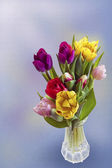 Tulips for Easter — Stock Photo