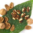 Walnuts — Stock Photo #4943930