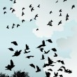 Wild Birds - Imagens vectoriais em stock