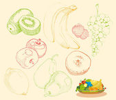 Stylized fruit and fruit group on a plate — Stock Vector
