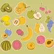 Vector set of stylized fruit drawing — Stock Vector #5305729