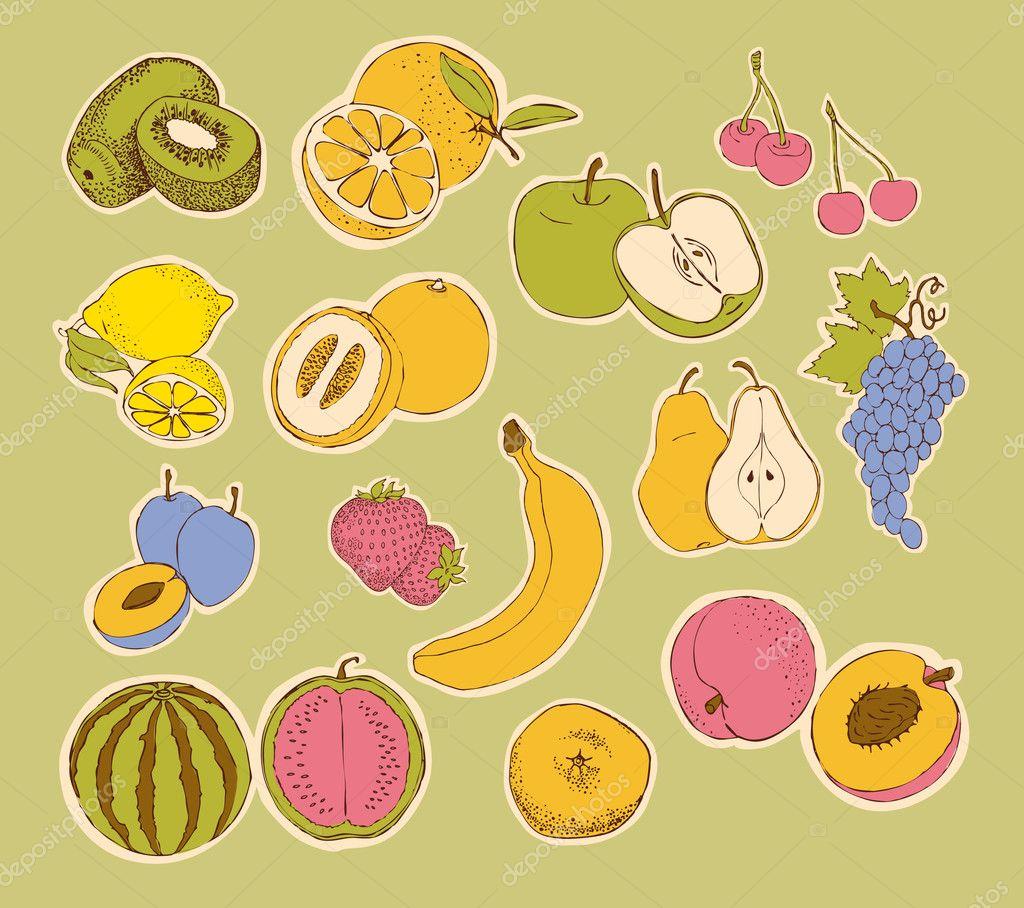 Fruit Pictures Drawing Stylized Fruit Orange