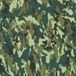 Постер, плакат: Camouflage pattern