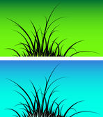 Grass silhouette — Stock Vector