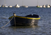 A little Boat — Stock Photo