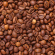 Arabica. — Stock Photo