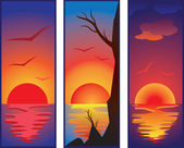 Set of sunset — Stock Vector