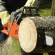 Chainsaw — Stock Photo #4983410