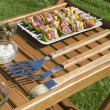 The barbecue set — Stock Photo #4984040