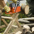 Chainsaw — Stock Photo #4984050