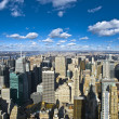 Royalty-Free Stock Photo: The New York City panorama