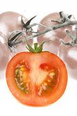 The slice of Tomato — Stock Photo