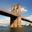 Stock Photo: Brooklyn bridge in New York City