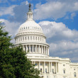 Royalty-Free Stock Photo: US Capitol in Washington DC