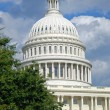 Stock Photo: US Capitol in Washington DC