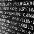 Vietnam war casualties on Vietnam War Veterans Memorial - Stock Photo