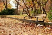 Bench in Park — Stockfoto