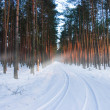 Winter time in poland — Stock Photo #5060306