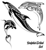 Dolphin tribal set — Stock Vector