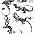 Stock Vector: LIZARD TATTOO SET